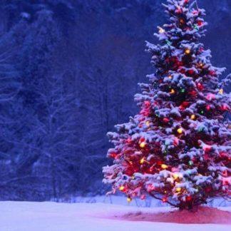 Déco Noël Extérieur